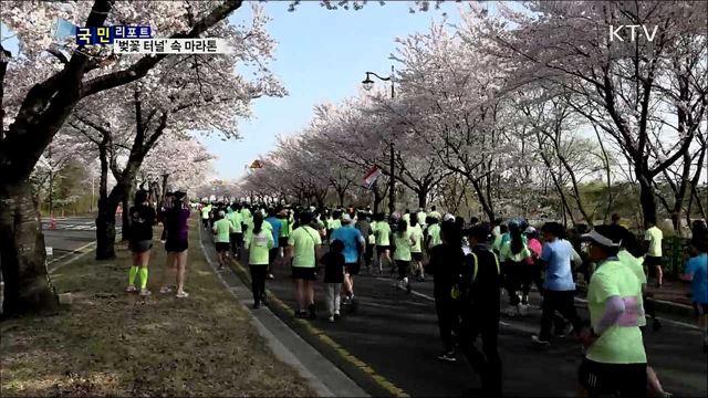 '벚꽃 터널' 마라톤 성황···외국인 감탄 연발